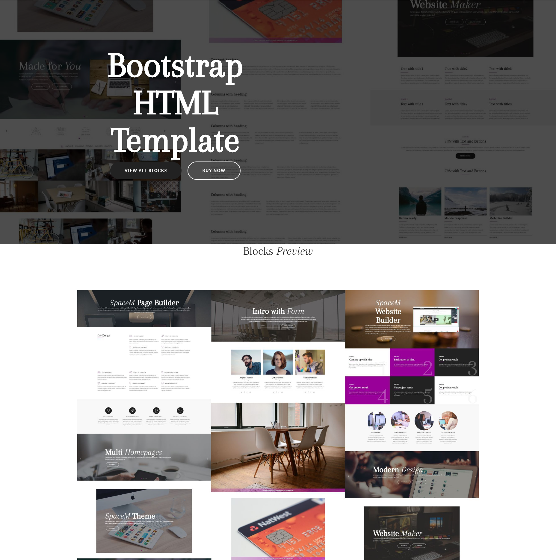 CSS3 Bootstrap SpaceM Themes
