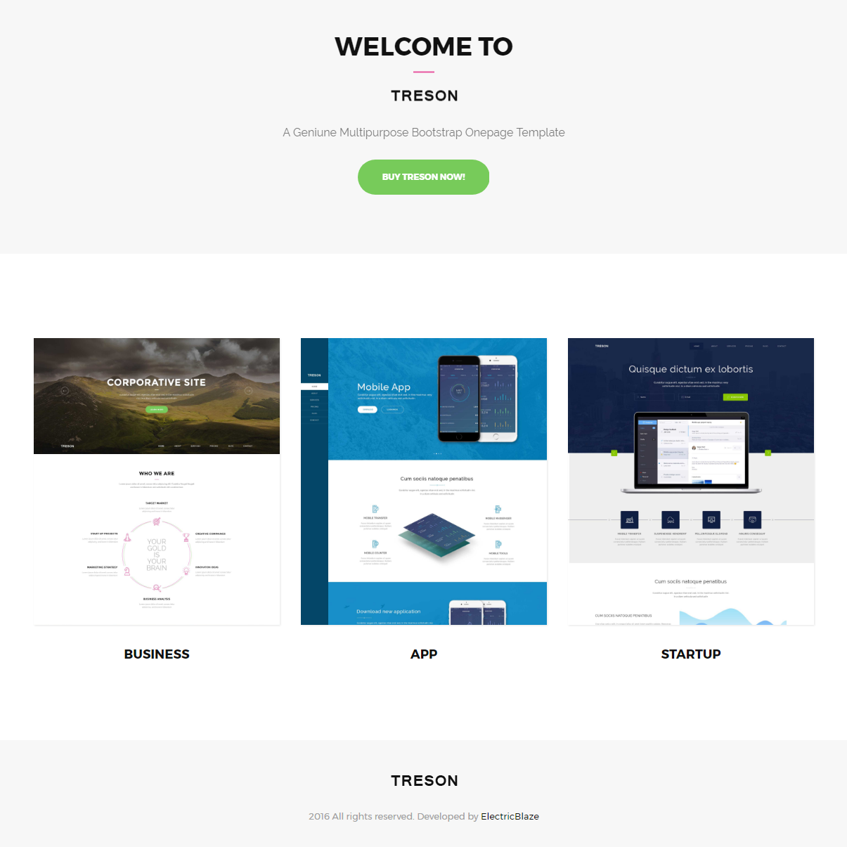 Responsive Bootstrap Treson Themes